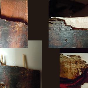 Realización de injertos de madera (cliente ArteCimbra)