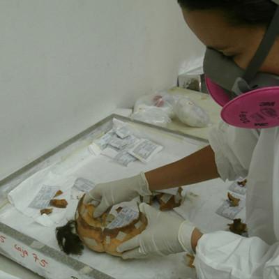Conservación de restos humanos. Cultura Chinchorro. Desierto de Atacama. Chile (empresa privada)