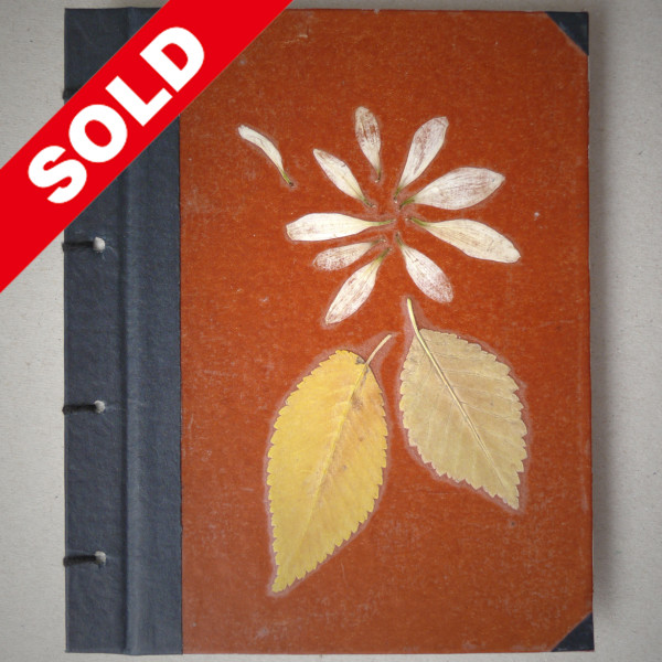 a_spring1_sold