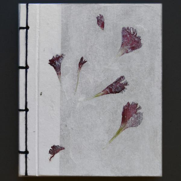 libreta pétalos rosas